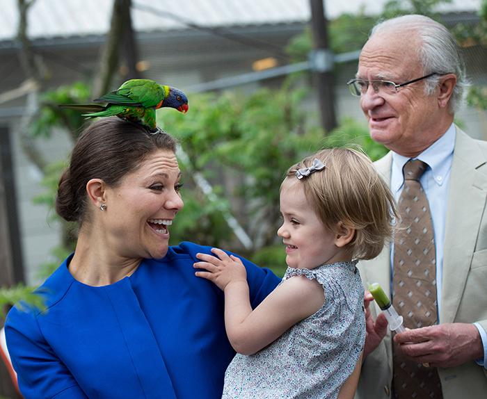 Ruotsin kuningas Kaarle Kustaa, kruununprinsessa Victoria ja prinsessa Estelle, kuninkaalliset, hovikirjeenvaihtaja